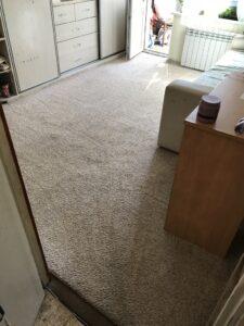 Химчистка ковров в Киеве - Мой диван. Фото